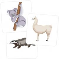 Пример карточек из набора «Зоосад»