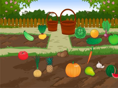 «Огород. Собираем урожай», бесплатное пособие для лексических тем
