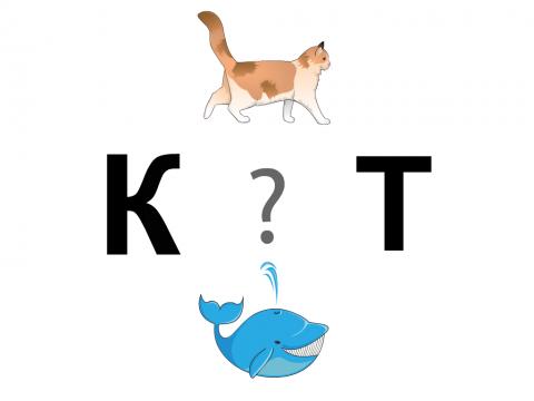 «Отгадай букву», бесплатное пособие для звукового анализа слова