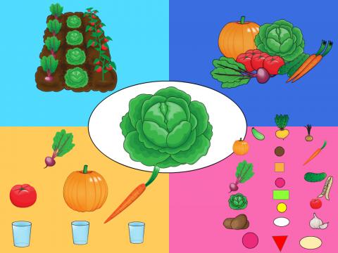 «Овощи», бесплатное пособие для составления рассказа
