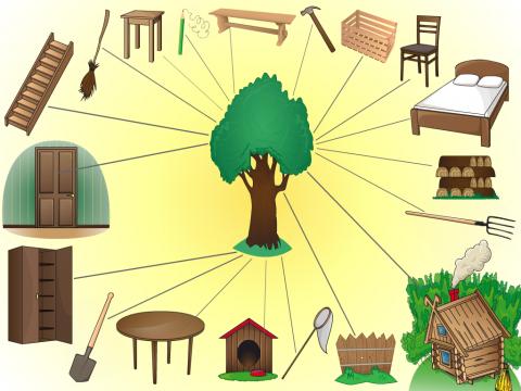 Картинка свойства дерева для дошколят