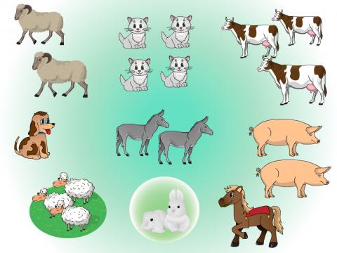 Сосчитай домашних животных