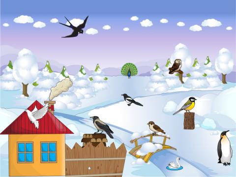 «Зимующие птицы», бесплатное пособие для лексических тем