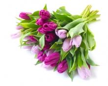 Дорогие мамы, поздравляем с 8 марта!