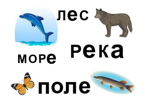 «Читаем слова», бесплатное пособие для чтения слов