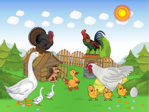 «Домашние птицы», бесплатное пособие для лексических тем