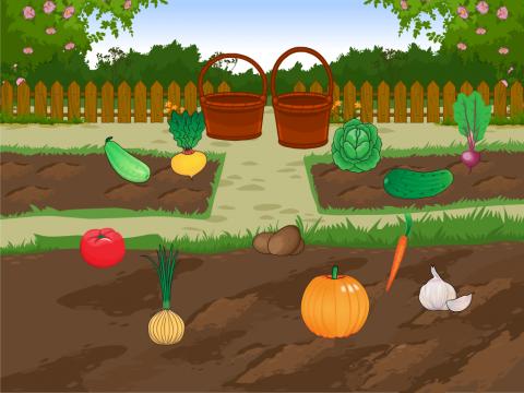 Огород грядки картинка для детей