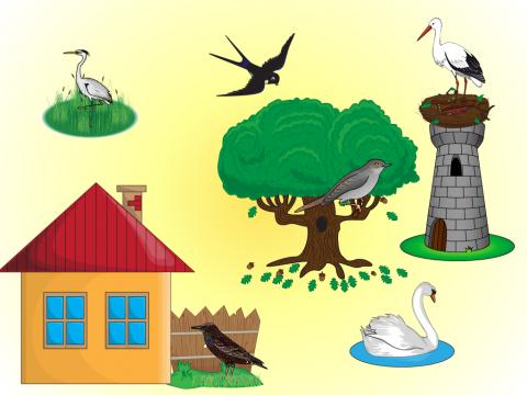 «Перелетные птицы», бесплатное пособие для лексических тем