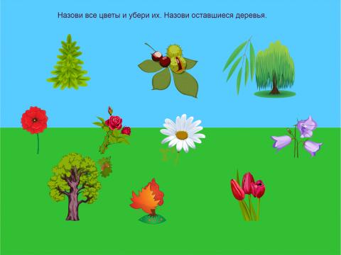 «Цветы и деревья», бесплатное пособие для лексических тем